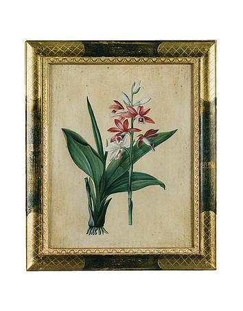 Bianchi Arte - Oil on Canvas Botanical Painting