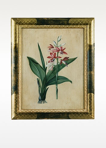 Oil on Canvas Botanical Painting - Bianchi Arte
