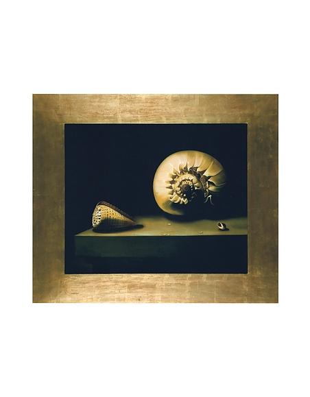 Image of Bianchi Art Works Dipinto a Olio con Conchiglia