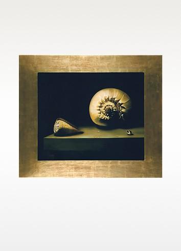Bianchi Arte Картина с Изображением Раковин, Масло на Холсте