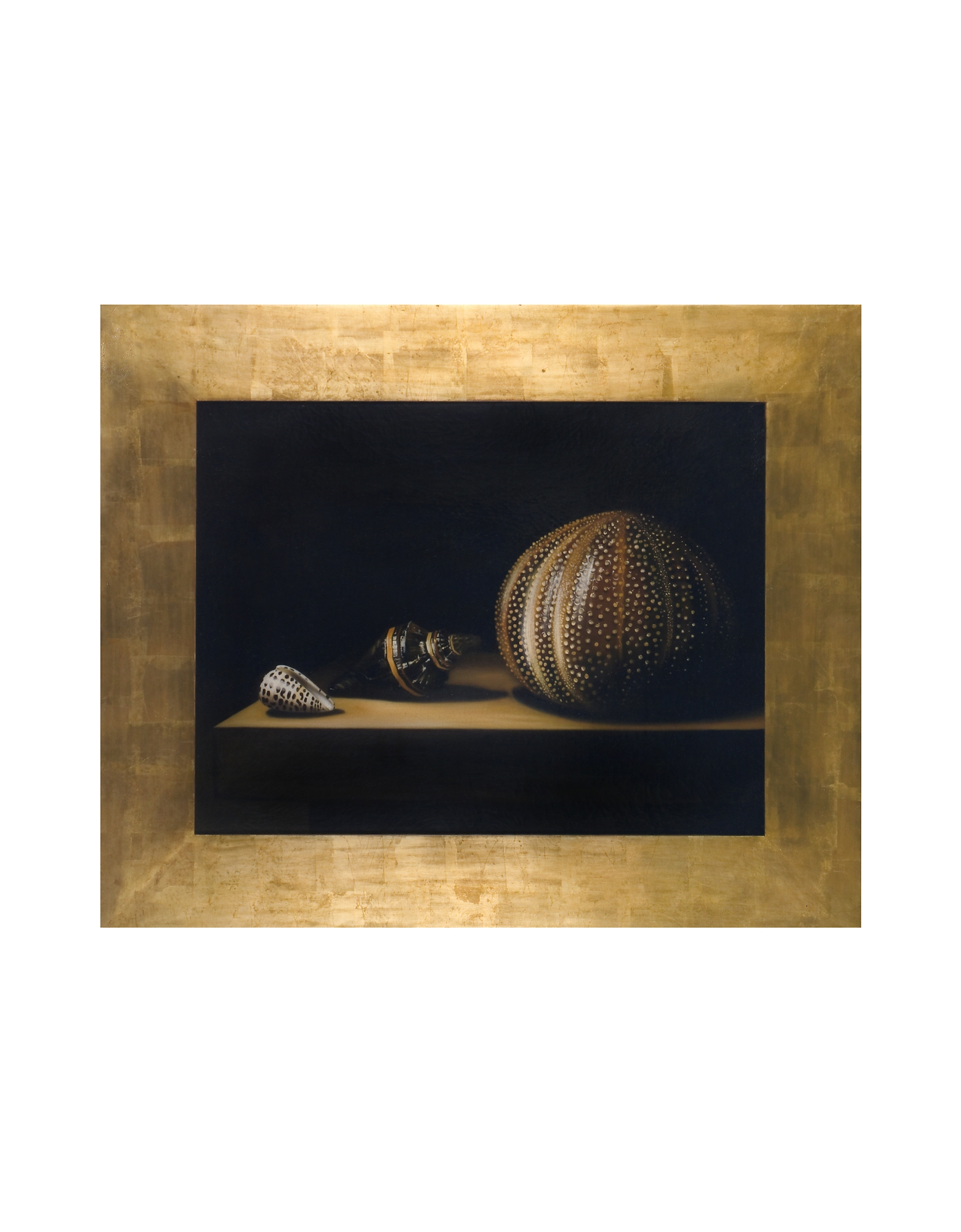 Bianchi Arte Paintings, Oil on Canvas Shells Painting