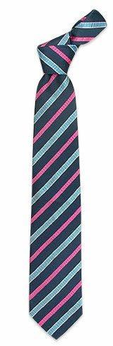 Villa Bolgheri  Fuchsia & Blue Bands Textured Tie