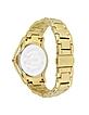 Ice Lady - Golden Sunray Watch - Just Cavalli