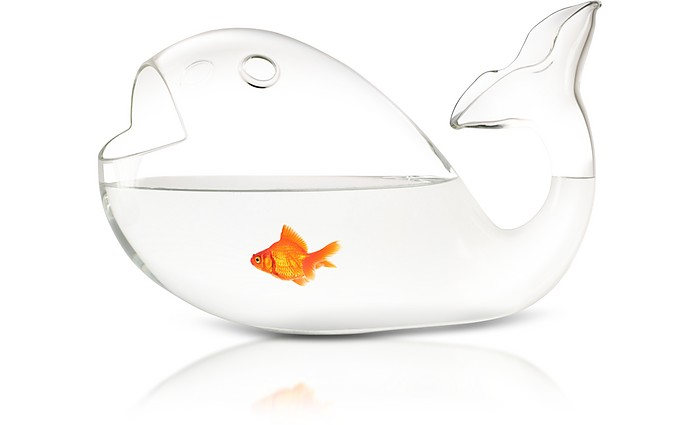Giona Blown Glass Fish Bowl - Skitsch